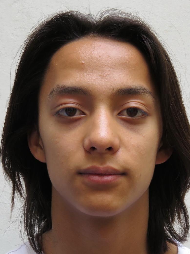 Sophie de Frenne